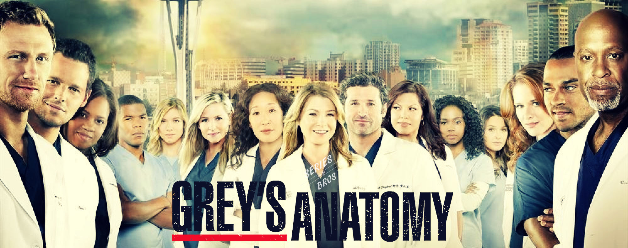 Greys Anatomy Series Over Bros